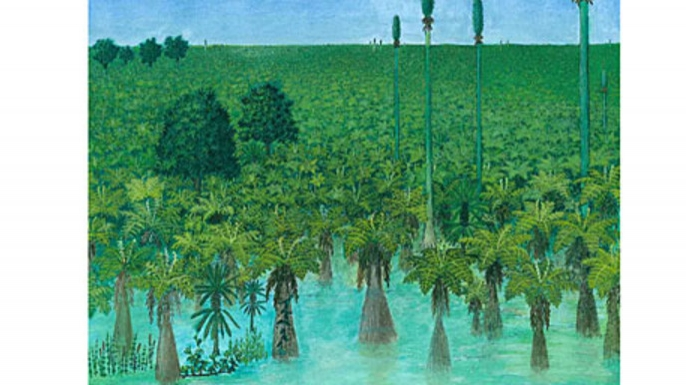 Artist reconstruction of tropical forest preserved more than 300 millon years ago.