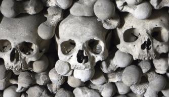 "Medieval ""Black Death"" Was Airborne, Scientists Say"