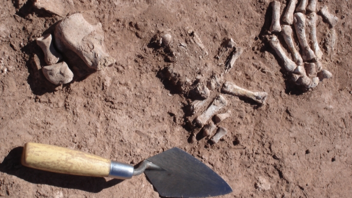 Remains found at the Khonkho Wankane site.