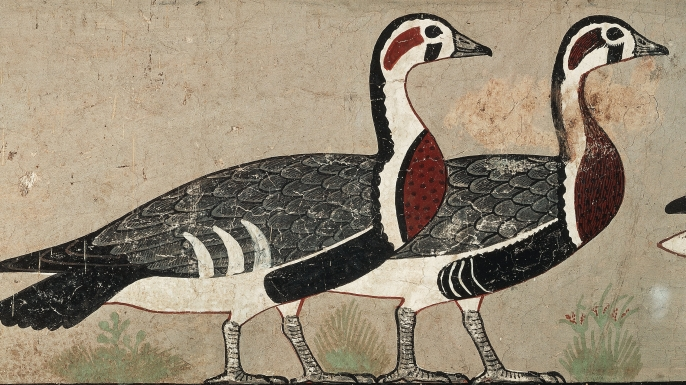 "A section of the ""Meidum Geese"" wall painting."