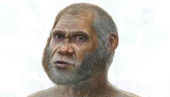 Did a New Human Species Thrive in Stone Age China?
