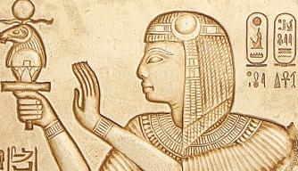 Plants Plot New Pharaoh Timeline