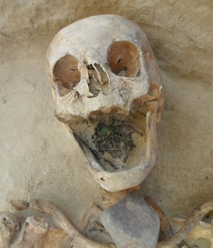 Another female skeleton, this one with a stone placed on her throat. (Credit: Amy Scott/Gregoricka)