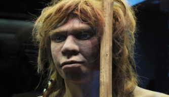New Study Suggests Neanderthals and Humans Co-Existed for Millennia