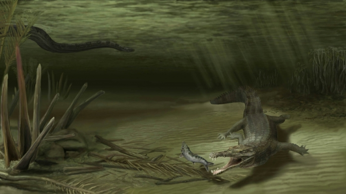 An illustration of how Acherontisuchus guajiraensis might have looked in its natural setting some 60 million years ago.