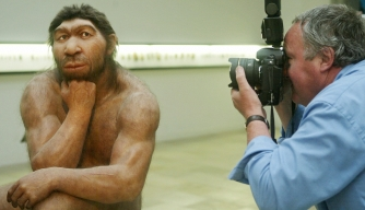Big Neanderthal Arms Caused by Making Clothes, Study Suggests