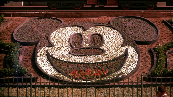 Flowers form the design of Mickey Mouse's face at Disneyland, 1955. (Credit: Loomis Dean/The LIFE Pictures Collection/Getty Images)