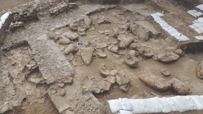 Excavated wine cellar at Tel Kabri site.