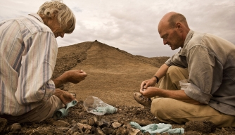 Multiple Lines of Early Humans Coexisted in Africa, Study Suggests