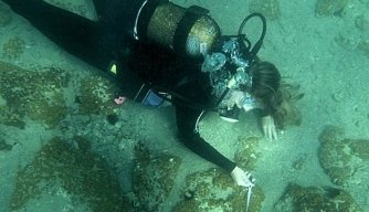 Massive Bronze-Age City Discovered Underwater in Greece