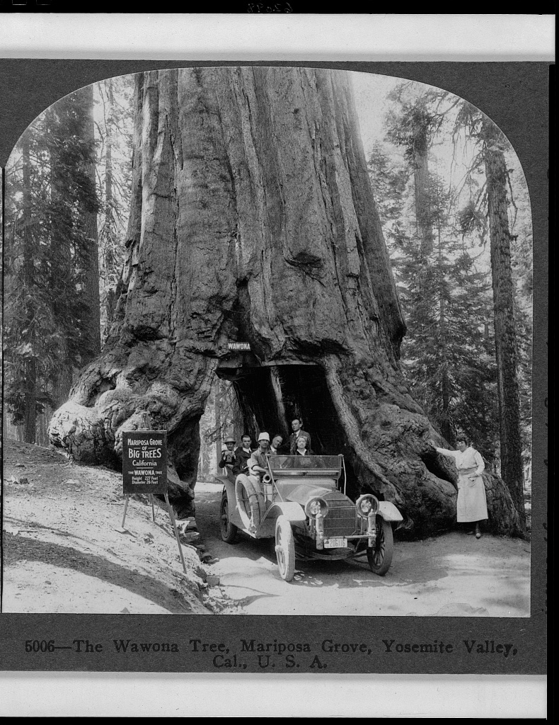 The History Notes England As Papal Fiefdom And Agreement: 10 Things You May Not Know About Yosemite National Park