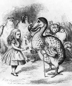 The dodo presenting Alice with a thimble from the 1st edition of Alice in Wonderland. (Credit: Hulton Archive/Getty Images)