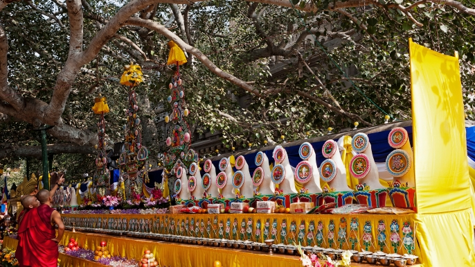 The bodhi tree where the Buddha gained enlightenment. (Credit:: David Cumming/Getty Images)