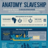 Anatomy of a Slave Ship Infographic