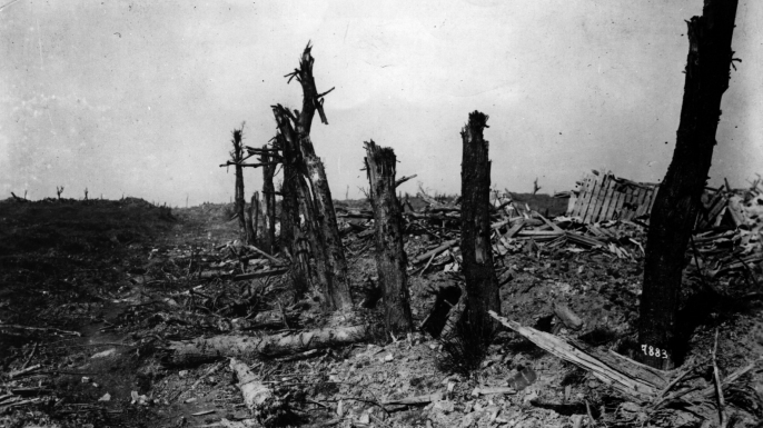 The battlefield after the first Battle of the Somme.