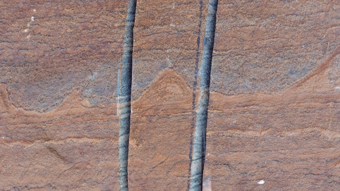 One of the stromatolite occurrences