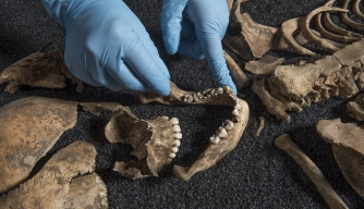 Possible Chinese Skeletons Could Rewrite Roman History