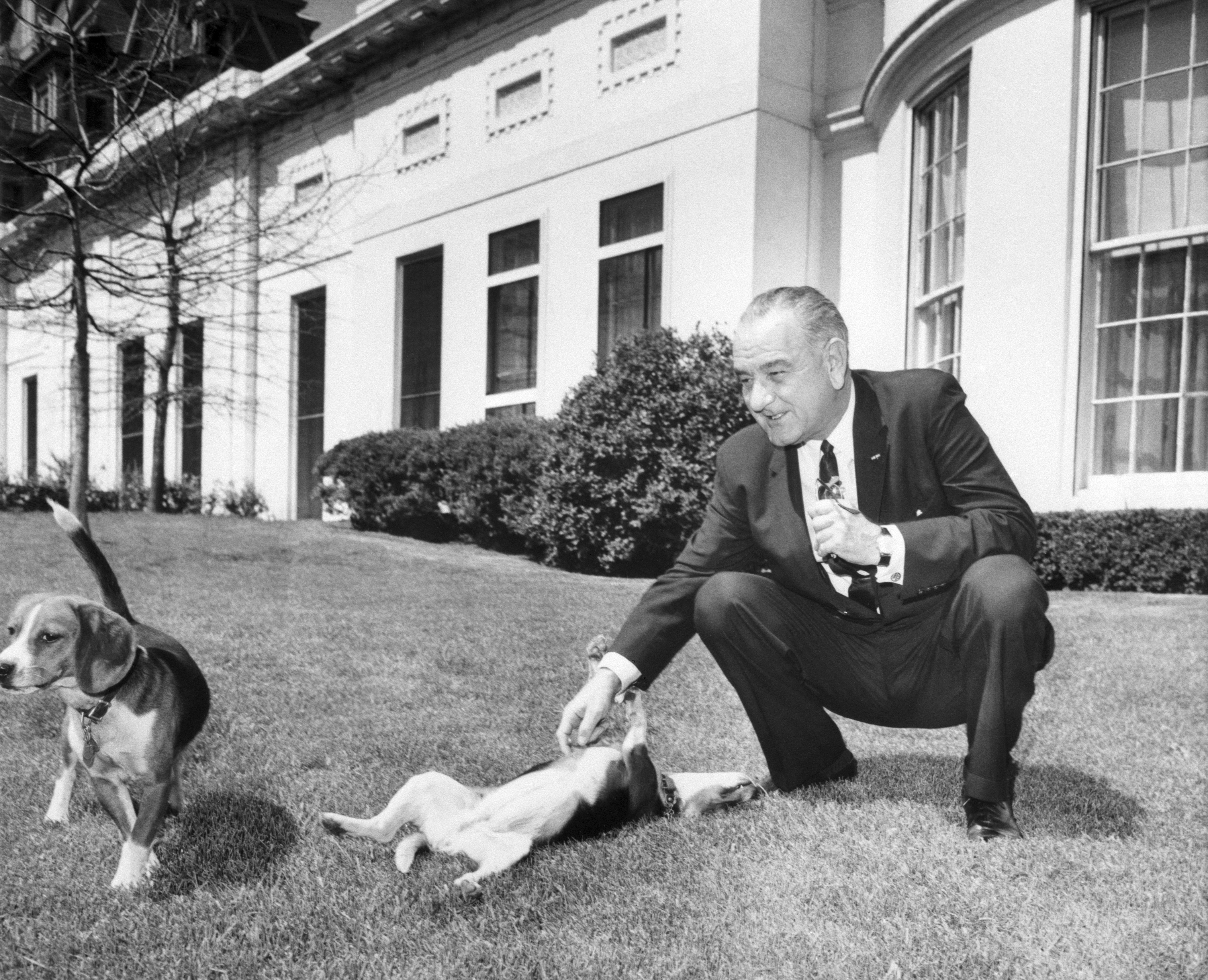 Lyndon Johnson S Dog