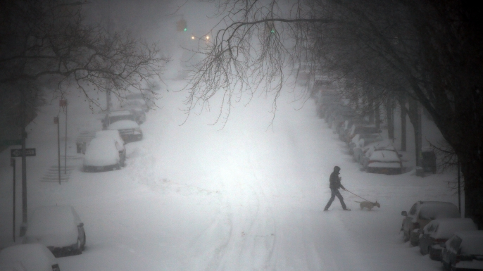 A person walks a dog through blizzard. (Credit: Spencer Platt/Getty Images)