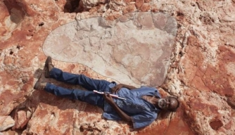 "Australian ""Jurassic Park"" Home to World's Largest Dinosaur Footprints"