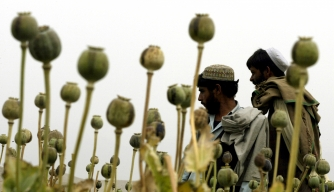 8 Times America's War on Drugs Was Stranger Than Fiction