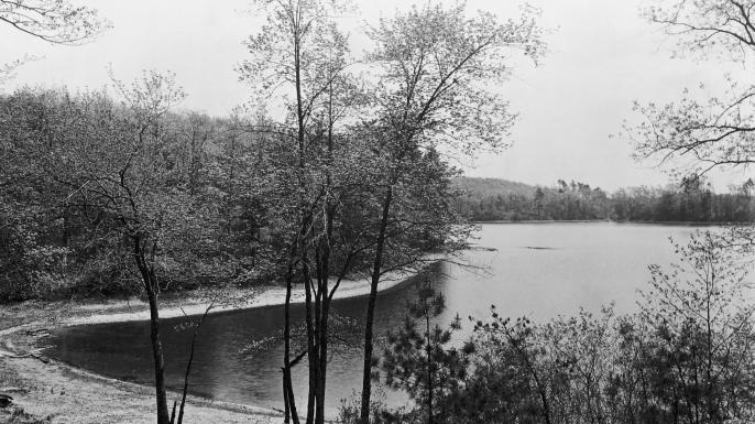 Walden Pond, Concord, Massachussets. (Credit: Bettmann/Getty Images)