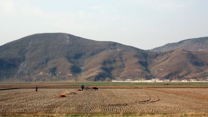 Collective farms in Kaesong, North Korea, 2007. After being ravaged by famine in the 1990s, North Korea again faces serious food shortages. (Credit: AFP/Getty Images)