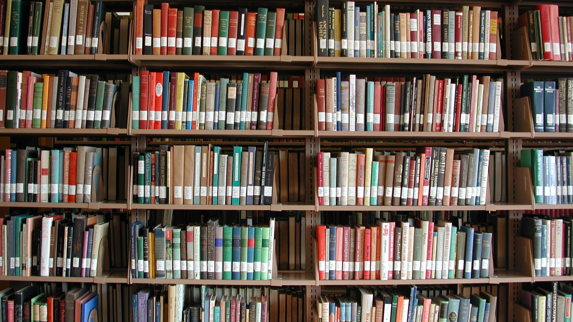 Books on a college library bookshelf. (Credit: Kickstand/Getty Images)