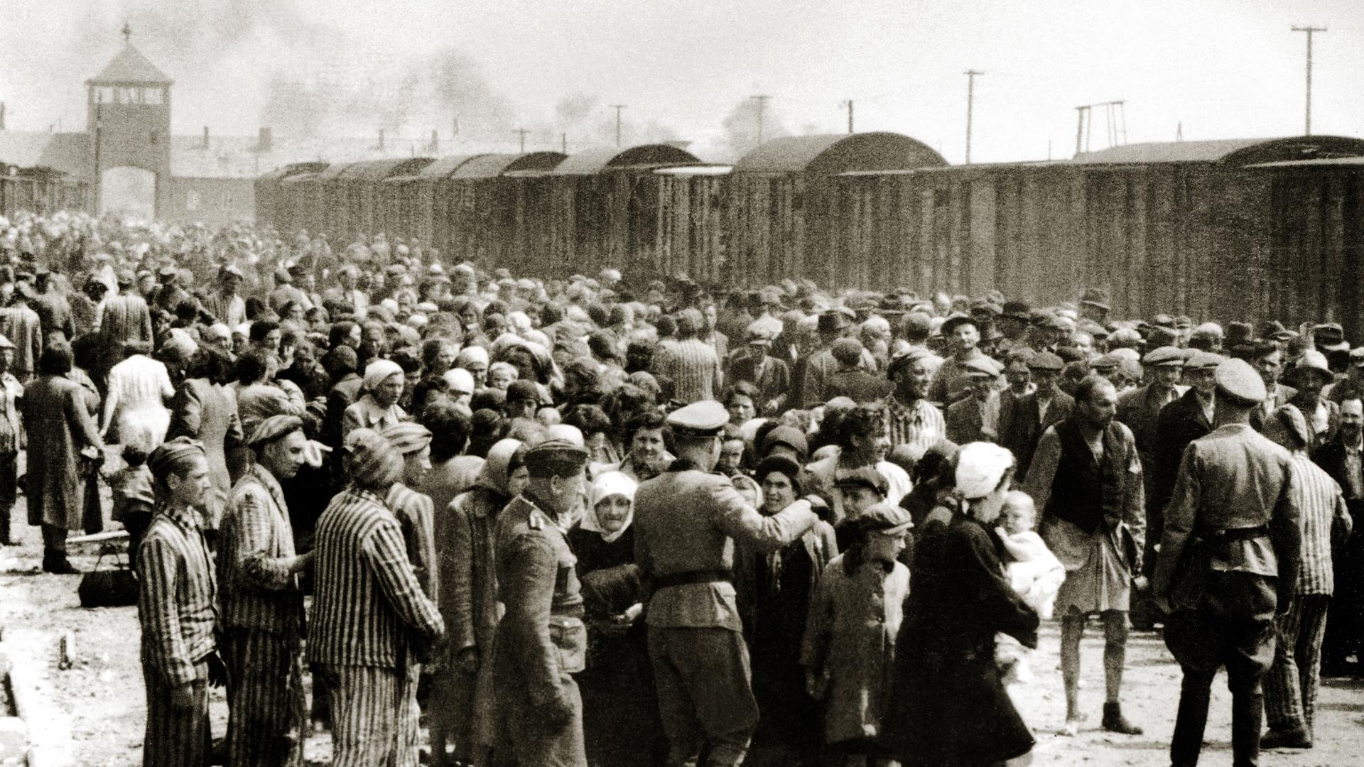 The arrival of Hungarian Jews in Auschwitz-Birkenau, in German-occupied Poland, June 1944. (Credit: Galerie Bilderwelt/Getty Images)