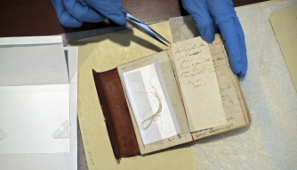 A lock of what may well be President George Washington's hair, found inside an almanac in the library at Union College in Schenectady, New York  by librarian John Myers. (Credit: Nathaniel Brooks/The New York Times/Redux)
