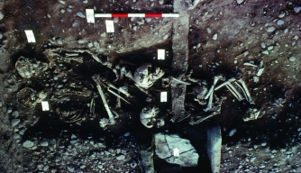 Mass Grave in England May Hold a 'Lost' Viking Army