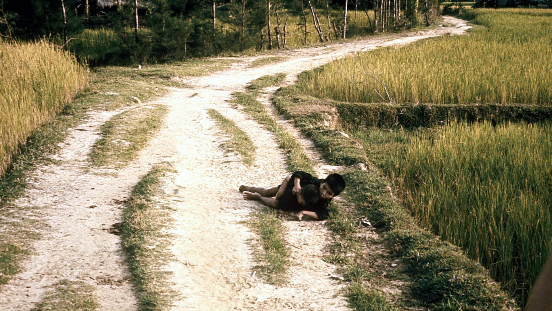 Vietnamese children about to be shot by US Army soldiers during pursuit of Vietcong militia, as per order of Lieutenant Calley Jr. (later court-martialed), an incident which became known as the My Lai Massacre, on March 16, 1968 in My Lai, South Vietnam. (Credit: Ronald S. Haeberle/The LIFE Images Collection/Getty Images)