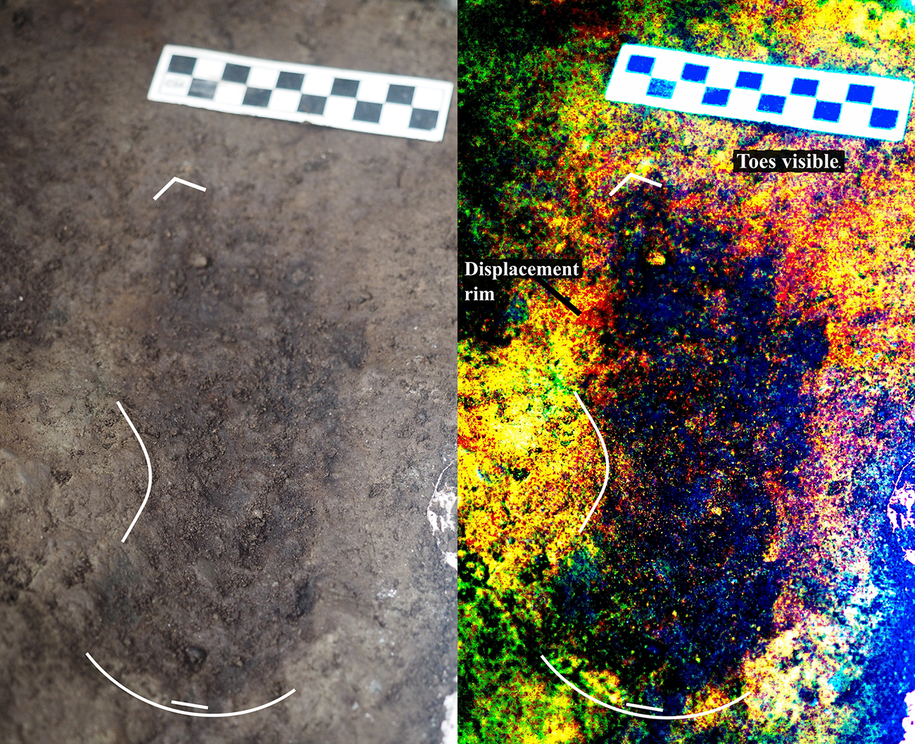 One of the prints discovered, beside a digitally-enhanced image that more clearly shows toe impressions and an arch indicating that this is a right footprint. (Credit: Duncan McLaren)
