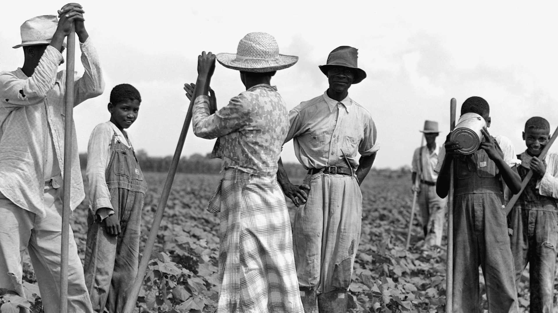 Men and women working a field on the Bayou Bourbeaux Plantation, a Farm Security Administration cooperative near Natchitoches, Louisiana. (Credit: Corbis/Getty Images)