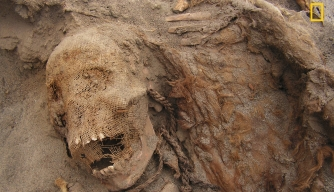Skeletons of 140 Children Discovered at Archaeological Dig